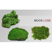 Grünraumgestaltung